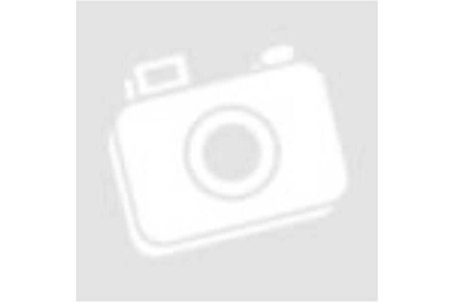 BIO EAT REAL HUMMUS CHIPS TENGERI SÓS 100G